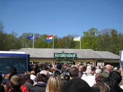 子連れ旅行 オランダ キューケンホフ公園 チューリップに会いに行く