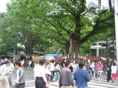武蔵総社大国魂神社例大祭