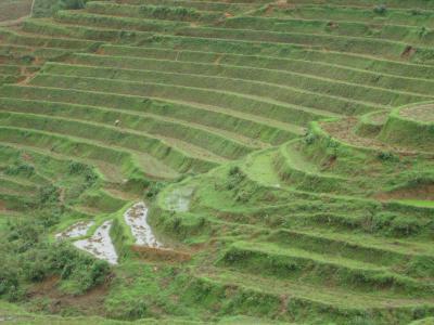 ベトナム サパ(カットカット村・リンホー村トレッキング付)&ハノイ 山の天気は変わりやすい!