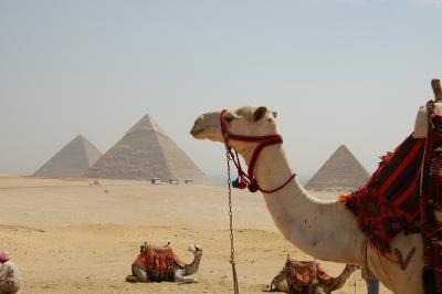 ファラオに会いたくて エジプト? 準備