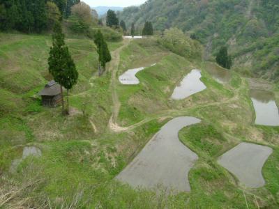 2009春 ~大厳寺高原・松之山~