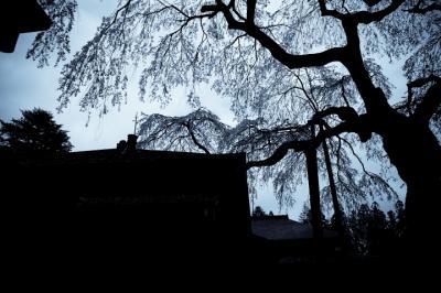 日光田母沢御用邸記念公園。