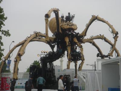 巨大クモ現る!
