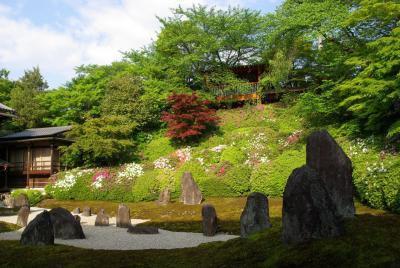 光明院で三玲さんのお庭を愛でる~ 美しく彩られた波心庭へ