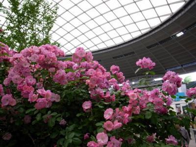 第11回国際バラとガーデニングショウ