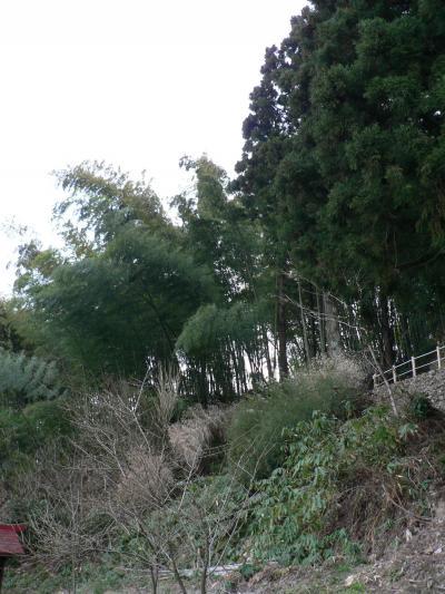 日本の旅 東北・中部地方を歩く 「天地人」ゆかりの与板城跡