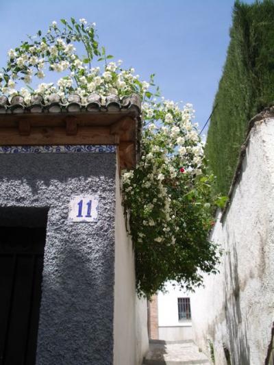 Honeymoon to Spain (7) 恐怖のアルバイシン散策