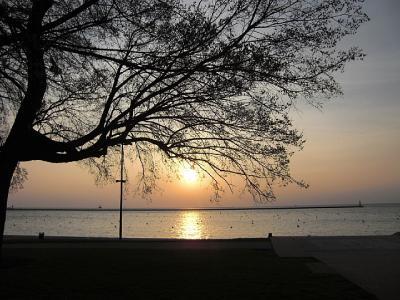 「ルート66」(2009年GW)。。。その3「朝のミシガン湖散歩」