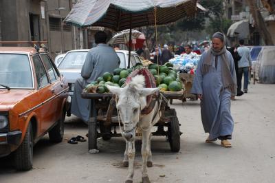 2008年UAE,エジプト、ヨルダン旅行-2-カイロ編1日目