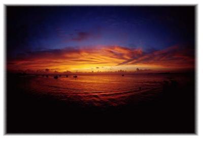 ラヤンラヤン島 ダイビングツアー 2002