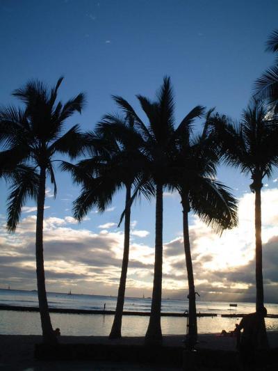 2002年 思い出のハワイ留学