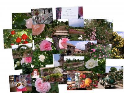 ハイジの村 ☆日本一長い薔薇の回廊☆