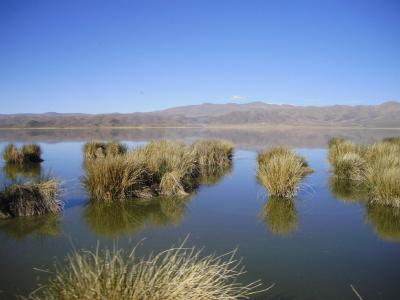 ウルウル湖と列車の旅:ロルーロ-ウユニ塩湖-アトチャ-トゥピサ-ビヤソン #2