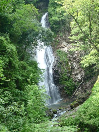緑豊かな原不動滝とのんびり一宮温泉 まほろばの湯