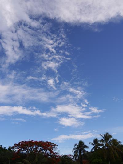 昼下がりの夢・ロタ島