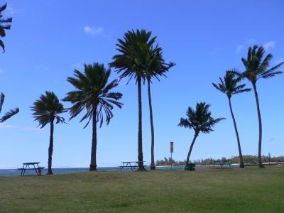 ハワイ島3泊&オアフ島2泊の旅【2009】5日目