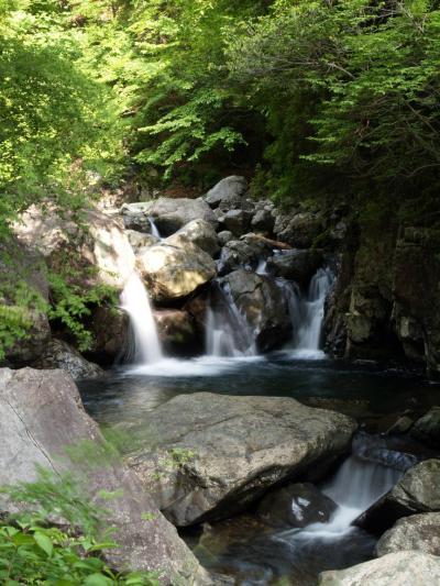 滝メグラーが行く27 名のある滝はないけれど 福地渓谷の無名滝 兵庫県宍粟市一宮町