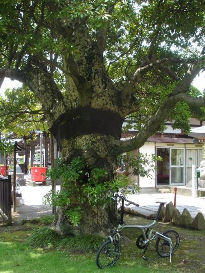ビアンキFRETTAで越谷レイクタウン・大聖寺巡り☆2009/06/20