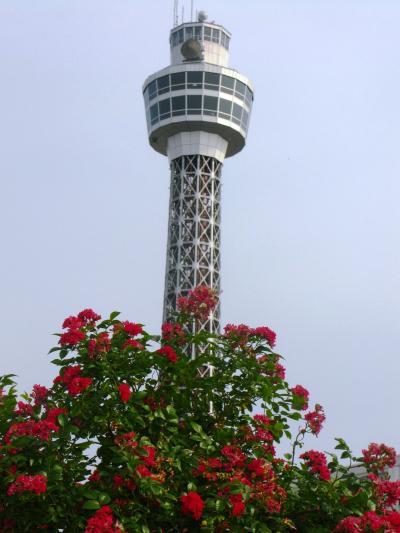 横浜-03 横浜マリンタワーの見える所 ☆再生した街のシンボル