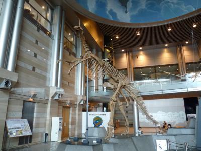 スケールの大きな地球博物館
