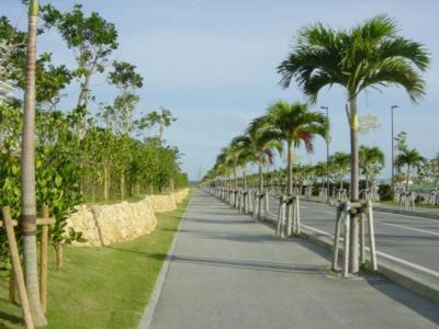 6月の沖縄旅行2