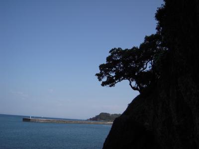 西伊豆徒歩の旅