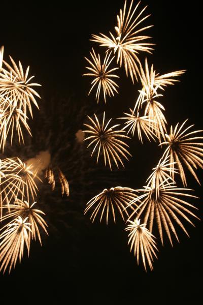 大好きな花火を見に・・・いたばし花火大会へ(09)