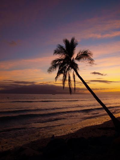 リベンジのマウイ 2009(7:ラナイ島ダイビング&ビーチBBQ編)