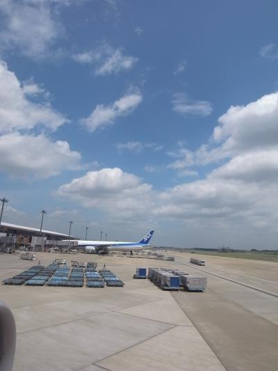 【涼♪ミシガンへ】Vol1:間一髪の旅立ち★成田空港~シカゴ~デトロイトへ★(2009年7月)