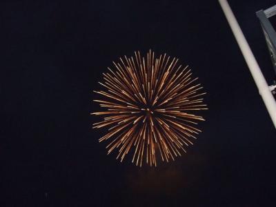 2009.08.01富士森公園の花火