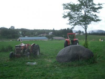 長門牧場で北海道を思い出す。すてきな牧場。