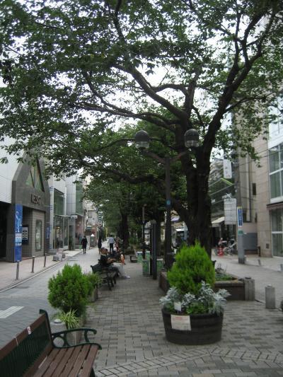【東京敗家行】自由之丘、代官山(4、5日目)