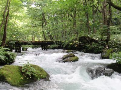 夏の風を感じて~十和田湖・奥入瀬渓流