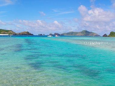 マンタシュノーケル★慶良間諸島