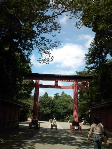 【お散歩】ひょっこり武蔵国一宮
