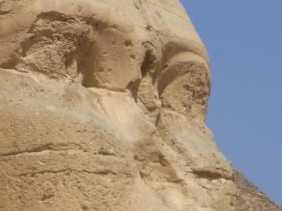 なべなべ、エジプトへ行く!(ギザの大きなワンちゃん編)
