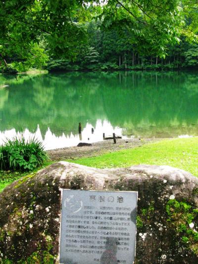 糸魚川市・高浪の池を訪ねて ☆巨大魚が棲むという