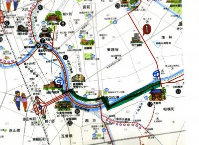 自然散歩-元荒川緑道(越谷市役所付近~シラコバト橋~相模町の不動橋)