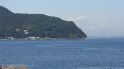 みかんの花咲く丘と伊東の海