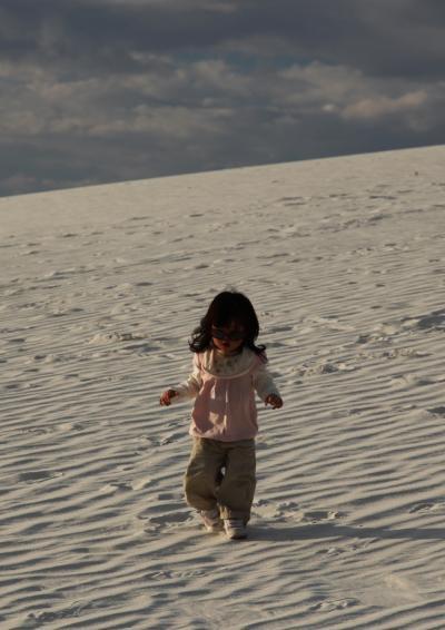 北米の大自然を巡る旅 2009年9月 ホワイトサンズへ