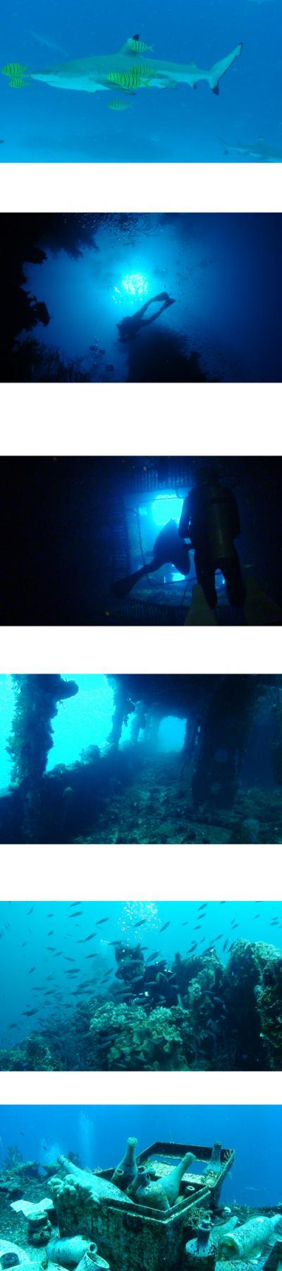 ダイビング チューク