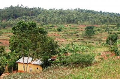 ルワンダの家屋は顔のように見えた