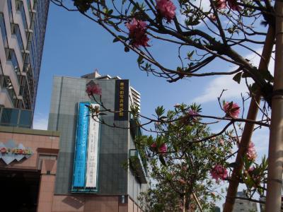 ☆東京都写真美術館☆と恵比寿ガーデンプレイス