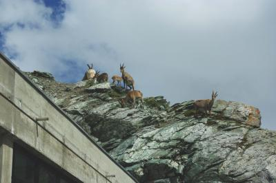 スイス鉄道の旅 4