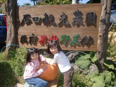 石田観光農園と軽井沢