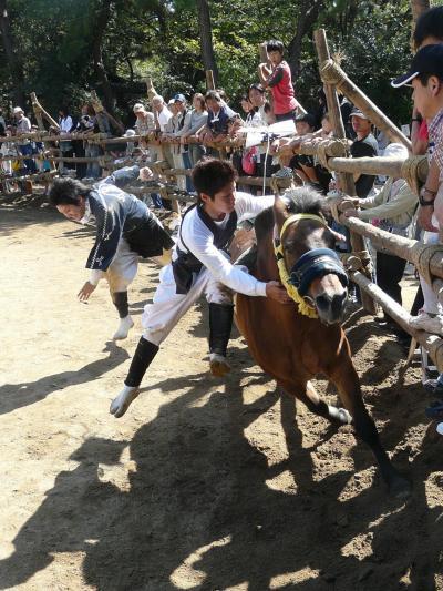 愛知県の西三河地方の高浜市『おまんと祭り』