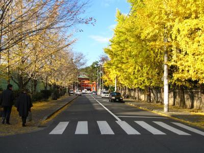 京都観光★~ぶらり旅~