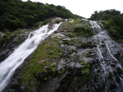3日間で屋久島を楽しむ旅(1日目)