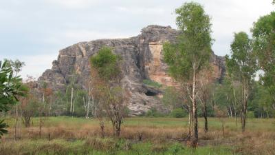 2009年オーストラリア カカドゥ2日目
