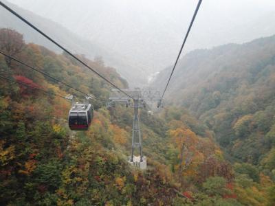 谷川岳で一足お先に肌寒い紅葉狩り